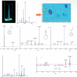 New and improved GC Image feature: ION Peak Detection for comprehensive chromatographic deconvlutio